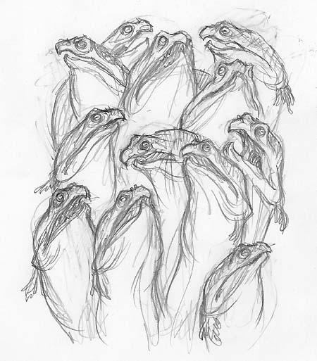 cover-sketch