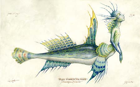 mermaid8x10