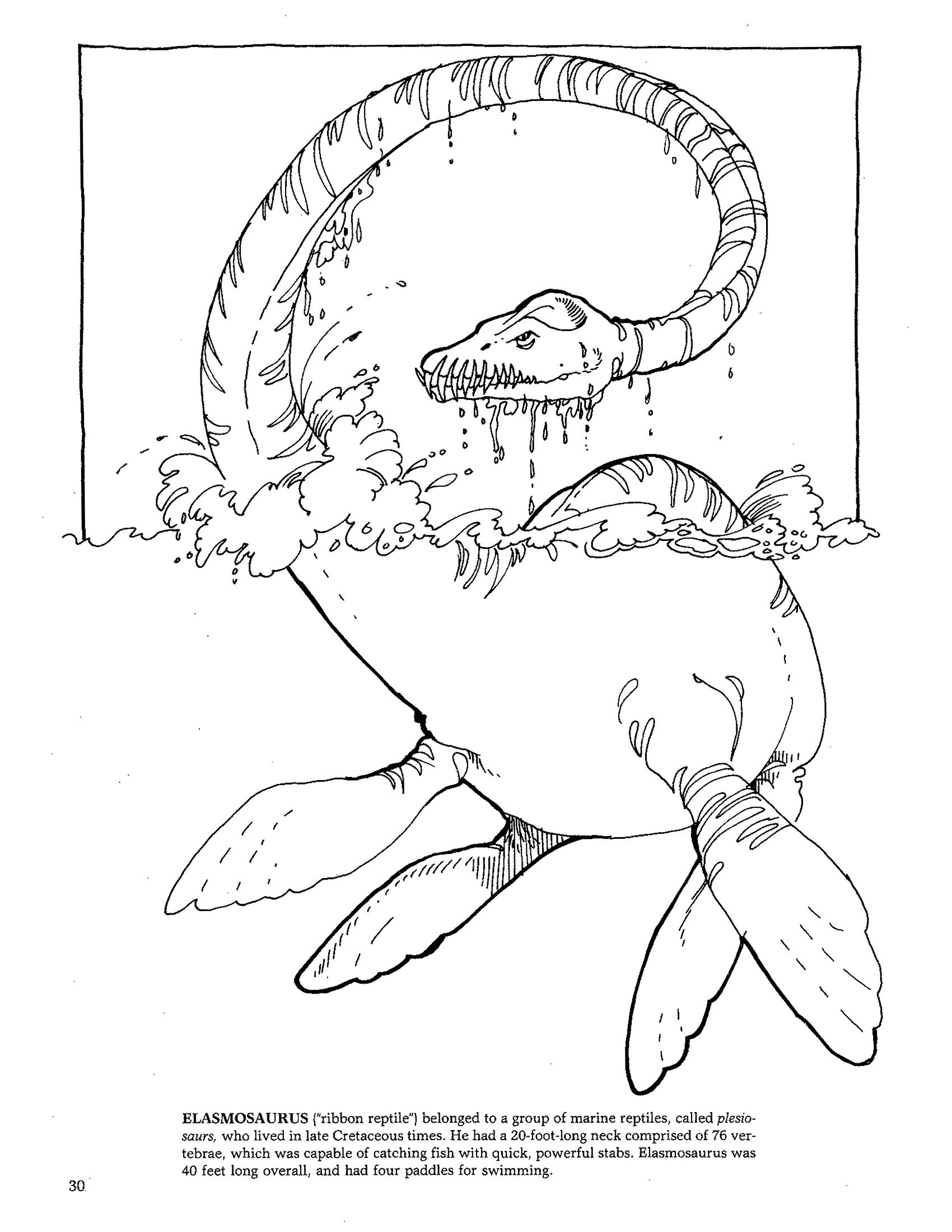 Coloring pages dinosaurs and dragons - Dinosaurs3 Jpg 1700 2200 Check Out This Oldie But Goodie Chidren Coloring Pages Print Or Save Import To Paint Pinterest Adult Coloring